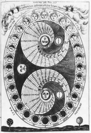 sciaterium selenorum kircher