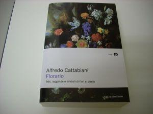 cattabiani florario san giovanni
